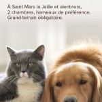POINSOT-autre-Flyer-4