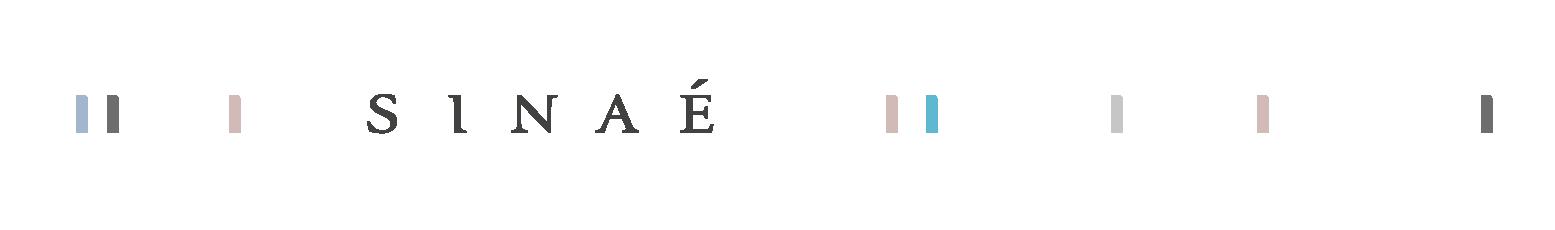 Sinaé - Studio de création graphique à Ancenis